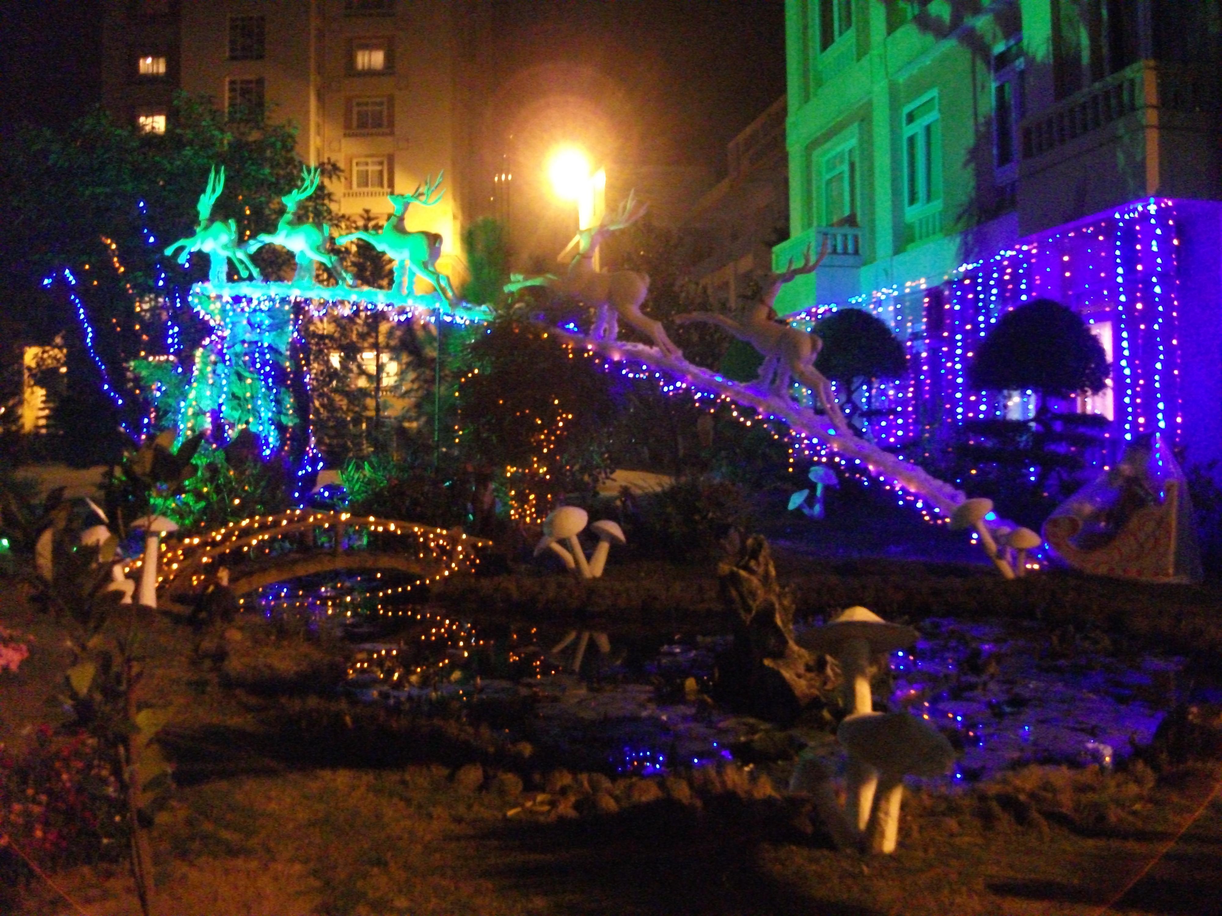 Không khí Noel tại Camela